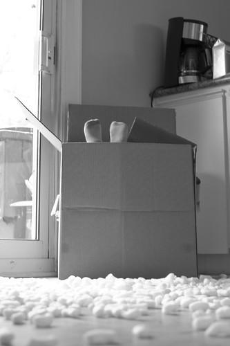 卢卡斯和包装花生-5之6