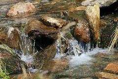 Bchlein (happy rollmops) Tags: wasser steine landschaft bayerischerwald pltschern lambach