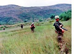 delta co hill119 (eks4003) Tags: usmc dangerous bush marine walk vietnam grunt nam oohrah 1stmarinedivision