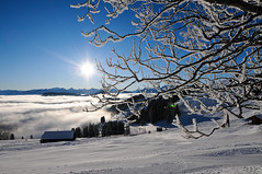 Winter 2009 Rigi Staffel (fotojaps) Tags: winter panorama berg schweiz switzerland nikon nebel natur nikkor morgen 2009 wandern januar rigi d300 nebelmeer kulm staffel anawesomeshot nikkorafs1424f28 fotojaps