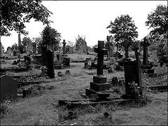 radnor_street_cemetery_1_470x353