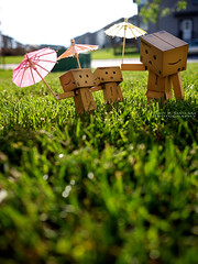 078/365:  Umbrella You, Umbrella Me. (Randy Santa-Ana) Tags: summer nature umbrella toys danbo gf1 project365 danboard minidanboard minidanbo 365daysofdanbo