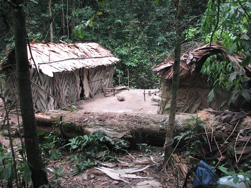 Hunting camp in Tshuapa Lomami forest