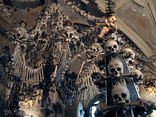 Bones!!!!!!