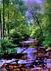Otter Creek—Orton (☩ D L Ennis) Tags: nature blueridgeparkway orton ottercreek dlennis