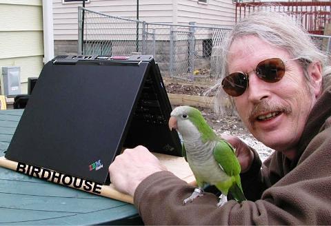 Casa para passarinho...