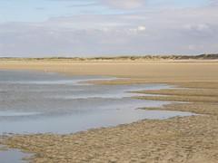 dunes, beach