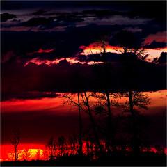 Prairie (josefontheroad) Tags: perception alberta vernissage hwy37 artandphotography favoritesofmyfavorites saariys saariysqualitypictures thetruthgallery magicunicornverybest