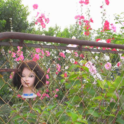 why doll head?