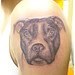 dog_big_tattoo