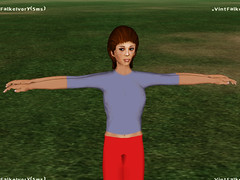 OpenSim Ruth: No physics