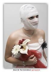 La Novia (DavidGorgojo) Tags: flowers woman flores love bride mujer retrato amor romance romantic venda novia dianabas