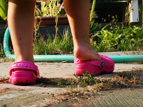 Gambettes hot pink crocs in the garden