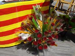Sant Jordi Vilanova Geltru 2010 038