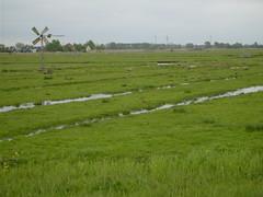 Mill in Westwouderpolder (inyucho) Tags: lake holland nature netherlands dutch meer nederland vogels reserve typical polder noordholland dewoude alkmaardermeer natuurreservaat bosman weidemolen westwouderpolder bosmanmolentje onderbemaling
