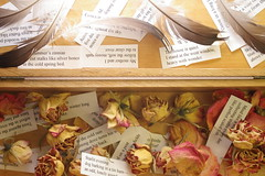 box of spring haiku in November (jenfarina) Tags: november roses stilllife collage poetry haiku photoaday poems loonfeathers