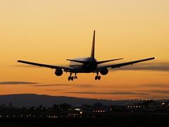 Who Ordered The Large Hawaiian????? (vector1771 (Hangar71.com / Aviationintel.com)) Tags: pdx 767 hawaiianairlines