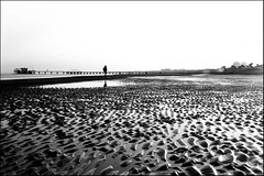 She doesn't love walk alone. (flevia) Tags: bw italy landscapes bn ilfordhp5 beaches biancoenero ud lignano nikonfa nikkor35mmf2 bwdreams supershot bnpaesaggi aplusphoto flevia shedoesntlovewalkalone invernoalmare winteratsea uddintorni