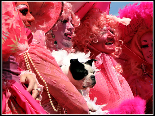 Pink_Ladies_and_Dog