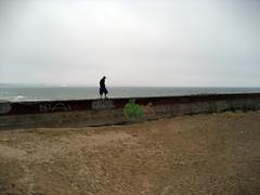 IMG_2898.JPG (0x000000) Tags: sea summer balticsea rgen sassnitz da5d summer07