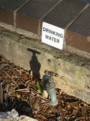 Sydney Drinking Water