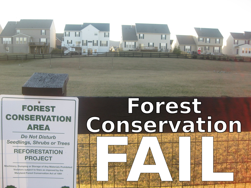 Forest Conservation Fail