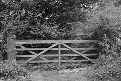DSC_0231 (western4uk) Tags: runcorn merseyside wiggisland