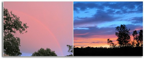 rainbow/sunset collage