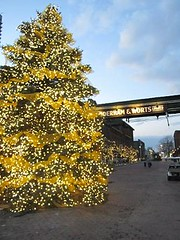 distillery district xmas market lit holiday tree