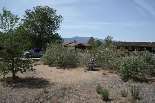 2007-05-26 009