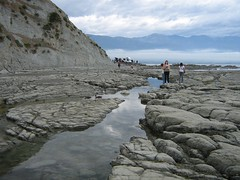 New Zealand South Island . Kaikoura. (1070) (pjwar) Tags: newzealand southisland pjwar