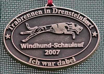 QL9T3817_Medaille_Drensteinfurt