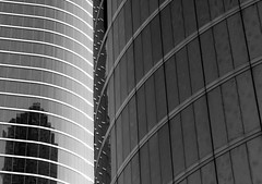 Reading Between the Lines (bill barfield) Tags: blackandwhite bw reflection building architecture blackwhite texas houston enron houstonist 600sqmiphotoexhibit