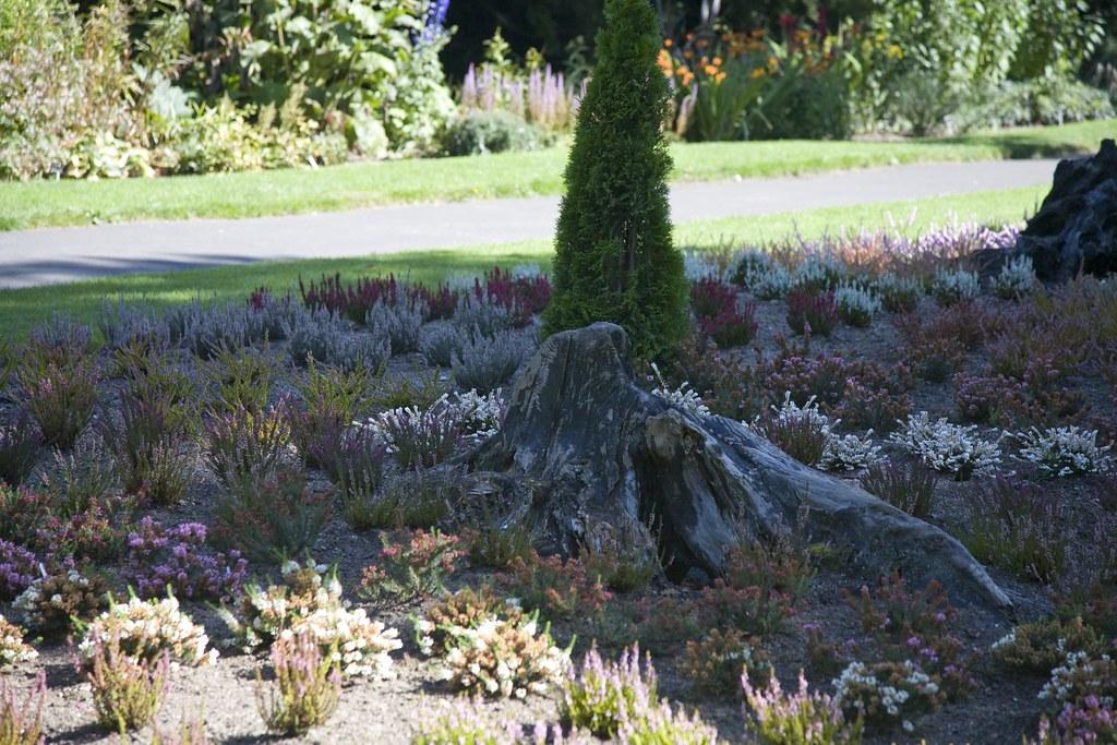 Botanic Gardens - Dublin, Ireland