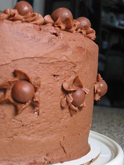 Chocolate Malt Matinee Cake 3