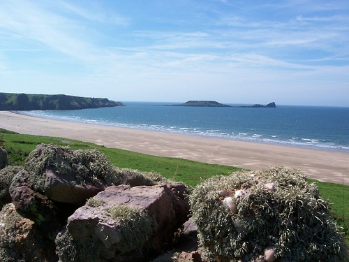 Worms Head with Lichen in the foreground
