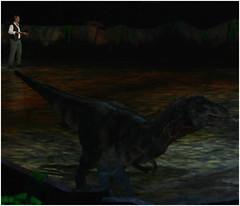 Baby Tyrannosaurus