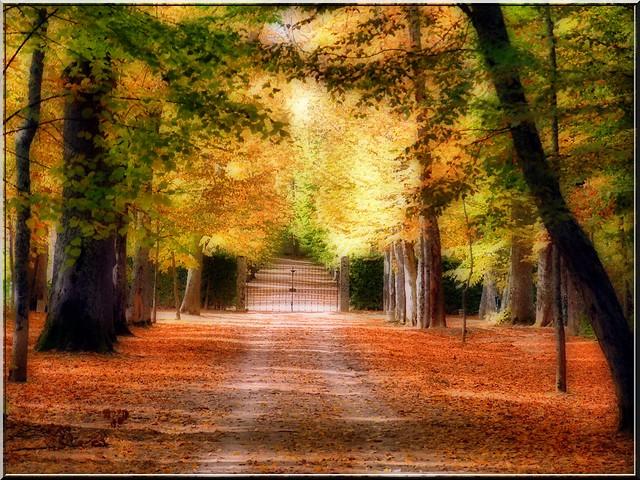 Jardines de La Granja.Segovia.