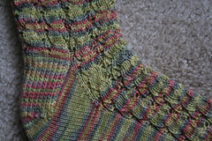 Loopy Laces Closeup 082607