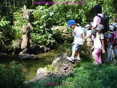 小水池生態