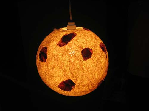 Natural Ceiling Lamp