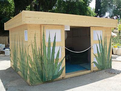 cabane cactus.jpg