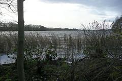 2010-11-13_125259