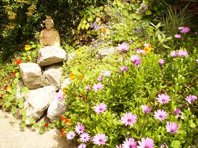 Brighton's garden   buddha and sculpture 4