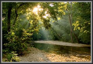 Busiek Creek