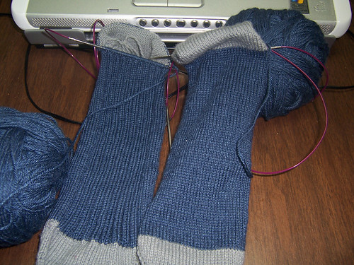 Ravenclaw Ribby Socks