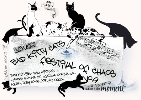 Bad Kitty Cat Festival Of Chaos