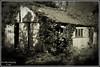Old shed (Paul Iddon (www.pauliddon.co.uk)) Tags: blackwhite shed vignette soe landcape whiteblack iddon superaplus aplusphoto tornadoaward