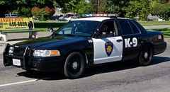 Pittsburg Police K9 (dcnelson1898) Tags: california blackandwhite ford police canine lawenforcement pittsburg k9 crownvictoria patrolcar firstresponder californiapeaceofficersmemorial pittsburgpolicedepartment