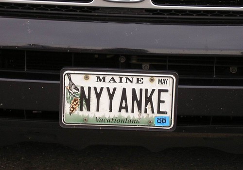 Yankee fans can't spell by Mark Sardella.